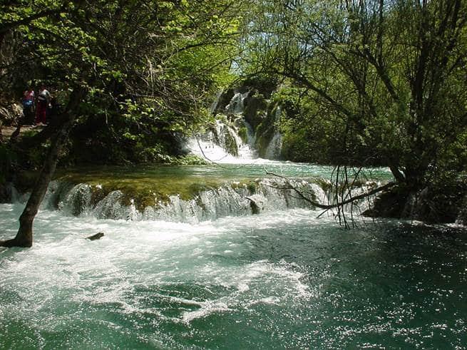 sanovnik reka